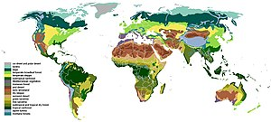 Plant ecology - World biomes are based upon the type of dominant plant.