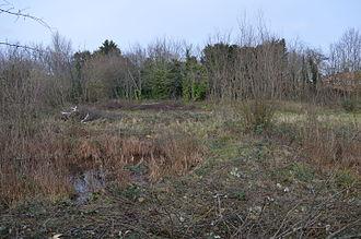 Birdbrook Road Nature Reserve - Image: Birdbrook Road Nature Reserve 4