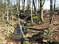 Birkey Burn - geograph.org.uk - 1308733.jpg