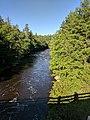 Blackwater Falls State Park WV 26.jpg