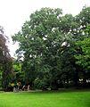 Blohms Park Hamburg-Horn Aug-2016 21.jpg