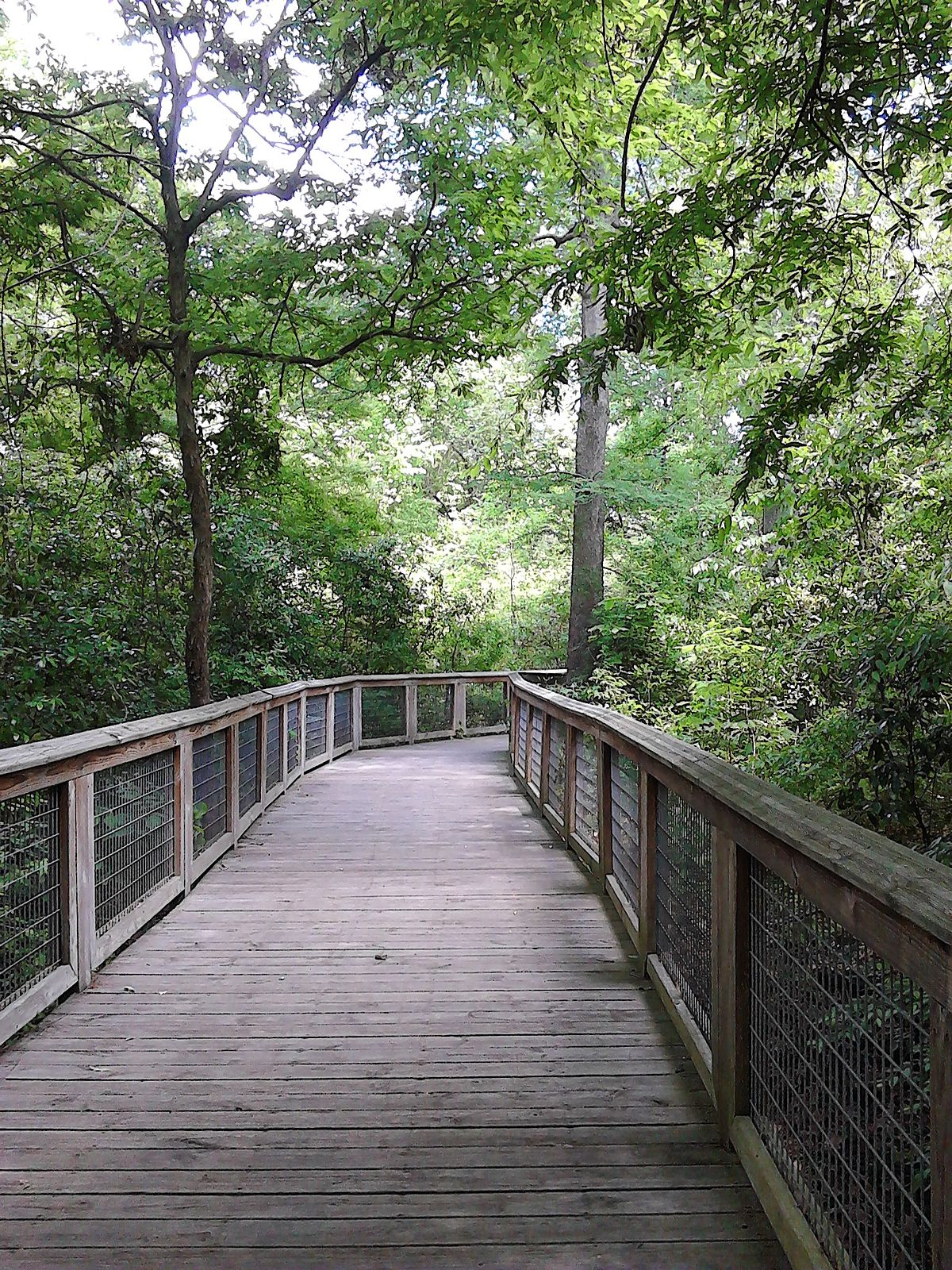 Brec Bluebonnet Swamp Nature Center