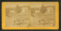 Boating on Lake Winnipeseogee, N.H, from Robert N. Dennis collection of stereoscopic views 2.png