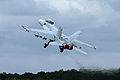 Boeing FA-18F Super Hornet 3 (4821862498).jpg