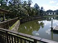 Botanical Garden in Putrajaya, Malaysia 13.jpg