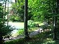 Botanischer Garten Gießen Teich.jpg