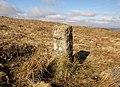 Boundary stone, Holne Moor - geograph.org.uk - 1181374.jpg