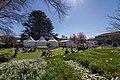 Bowral NSW 2576, Australia - panoramio (15).jpg