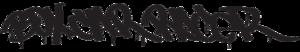 Box Car Racer - The band's logo.