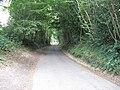 Brantridge Lane north towards the B2110 - geograph.org.uk - 1469346.jpg