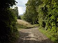 Bridleway above Lockinge - geograph.org.uk - 228401.jpg