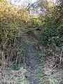 Bridleway near Ashbury - geograph.org.uk - 1690151.jpg