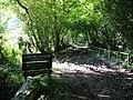 Bridleway to Ashford Hanger - geograph.org.uk - 954496.jpg