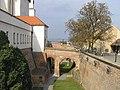 Brno Spilberk 2 beentree (cropped).jpg