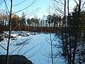 Bryansky District, Bryansk Oblast, Russia - panoramio (28).jpg