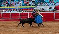 Bullfight in Maracaibo.jpg