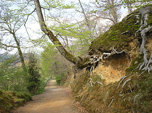 Pau, Pyrénées-Atlantiques - The footpath west from the Château