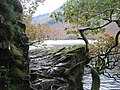 Buttermere - the lakeshore path - geograph.org.uk - 1562769.jpg