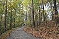 Buttermilk Falls - panoramio (14).jpg