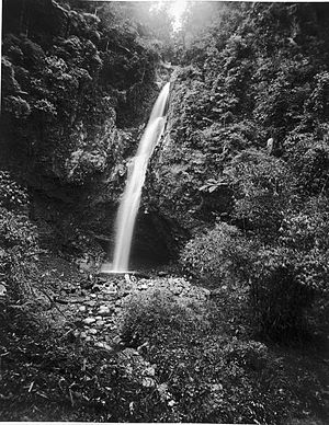 Sungai Puar - Image: COLLECTIE TROPENMUSEUM De Soengei Poear waterval in de omgeving van Fort de Kock Sumatra`s Westkust T Mnr 60003537