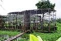 Cage des cercopithèques.jpg