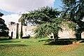Caldicot Castle - geograph.org.uk - 469477.jpg