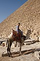 Camel and it's rider in Giza.jpg