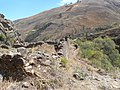 Camino de regreso desde la cascada hacia el sitio arqueológico.jpg
