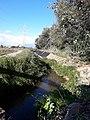 Canal de la Dreta del Llobregat - 20200830 184131.jpg