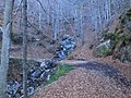 Canal del Pedregar Rodó, Parc Natural del Montseny (desembre 2011) - panoramio.jpg