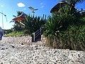 CanasViera - Florianopolis - SC - panoramio (44).jpg