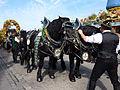 Cannstatter Volksfest 2011 Pferd verliert Zaumzeug.jpg