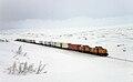 CargoNet Di 8 hauling freight tain on Nordlandsbanen.jpg
