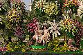 Carnaval de Nice - bataille de fleurs - 2.jpg