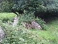 Carrickacroy Portal Tomb.jpg