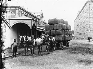 Wool bale - Wool bales at the broker's store in 1900.