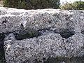 Castellar de Meca octubre dos mil dieciseis 03.jpg