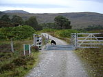 File:Cattle grid on Affric track - geograph.org.uk - 57794.jpg