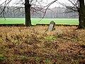 Cemetery in Gola Gorowska (13).jpg
