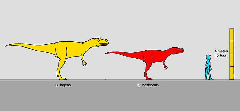 Better Hunter Ceratosaurus Or Allosaurus