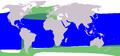 Cetacea range map Pilot Whale.png