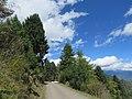 Chelela to Paro road views during LGFC - Bhutan 2019 (116).jpg