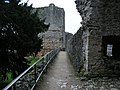 Chepstow castle - geograph.org.uk - 1125551.jpg