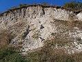 Cherkas'kyi district, Cherkas'ka oblast, Ukraine - panoramio - юра запеченко (182).jpg
