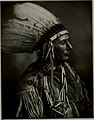 Chief Split Sky, Cayuga Tribe, by George D Jopson.jpg