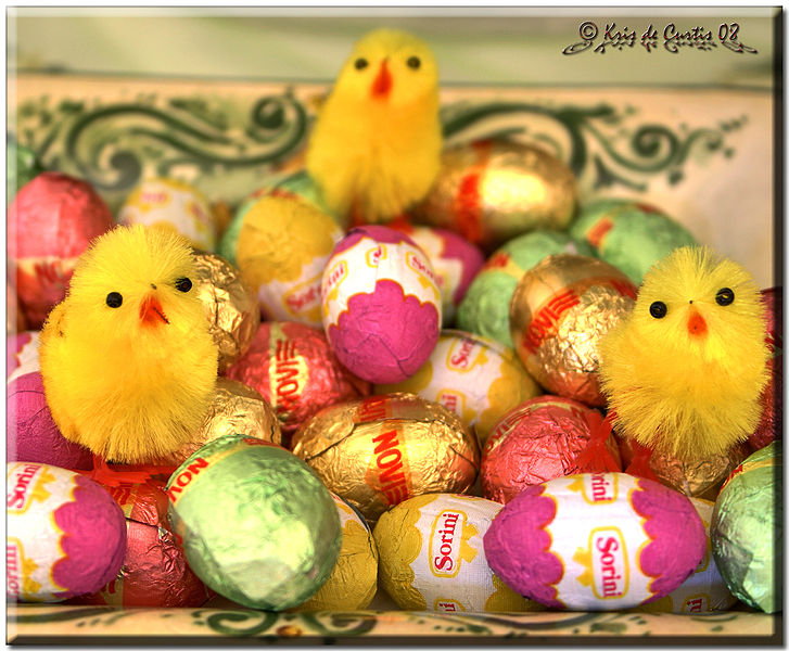File:Chocolate Eggs.jpg