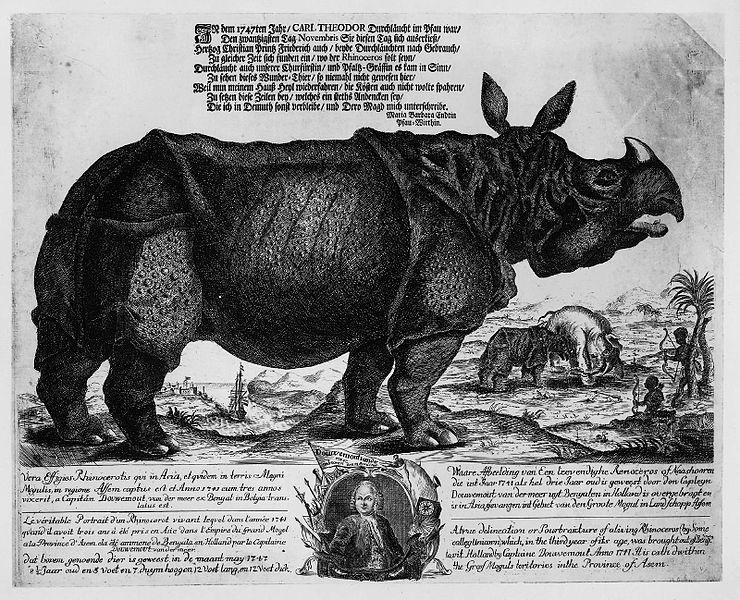 Clara, il rinoceronte; Mannheim, 1747