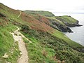 Coast path approaching Tintagel - geograph.org.uk - 1588386.jpg