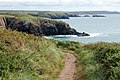 Coastpath east of Porthclais harbour entrance - geograph.org.uk - 1525252.jpg