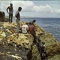 Collectie Nationaal Museum van Wereldculturen TM-20029838 Snorkelen bij de kust van Hato Curacao Boy Lawson (Fotograaf).jpg